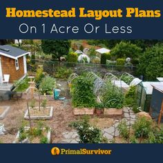 You don't need as much space as you would think to create a thrving homestead in your backyard on 1 acre or less. Our homestead layout plans for small spaces show you how to achieve your dream. Homestead Survival, Survival Skills, Survival Tips, Grand Popo, Homestead Layout, Farm Layout, Backyard Farming, Backyard Patio, Backyard Chickens