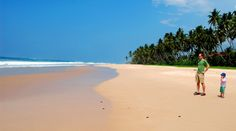 10 Things to do with Kids in Sri Lanka