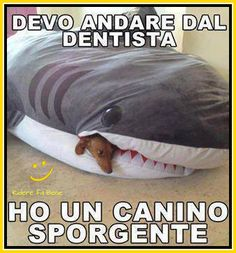 Barzelletta 051