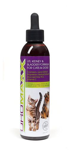 UroMAXX Urinary Tract, Kidney and Bladder Formula for Cats and Dogs, 6 oz Bottle ** Check out this great product. (This is an affiliate link and I receive a commission for the sales)