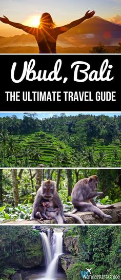 Ubud Bali - The Ultimate Travel Guide. With waterfalls rice terraces volcano hikes yoga spas and more this is the ultimate travel guide to Ubud in Bali Indonesia Bali Travel Guide, Asia Travel, Travel Guides, Travel Tips, Travel Goals, Ubud, Cool Places To Visit, Places To Travel, Travel Destinations