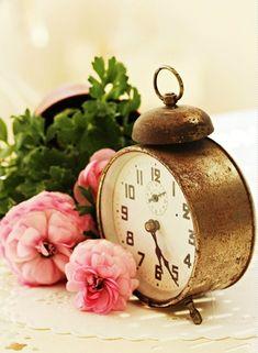 01abddef3d40 Las 23 mejores imágenes de Relojes