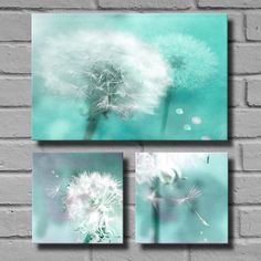 Dandelion Art Canvas - Dandelion Wall Art - Three Print Set - Flower Photography - Prints - Bedroom Decor -Home Decor - Art For Girls Room - pinned by pin4etsy.com