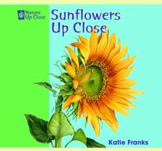 Sunflowers Up Close (Nature Up Close) by Katie Franks,http://www.amazon.com/dp/1404241418/ref=cm_sw_r_pi_dp_H1.csb18GVQ82040