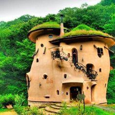 Casa de adobe con techo vivo