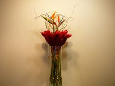 Wedding centerpiece - Red ginger and birds of paradise explode from a 20 inch glass cylinder.  Fabulous!