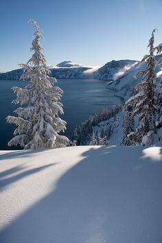 /sunlight+in+snow/