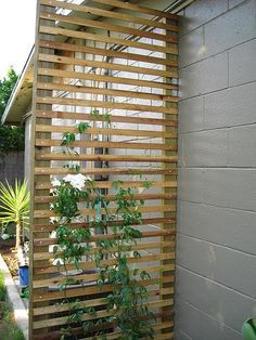 use a trellis to hide the view of a heater/rain barrel collection/other unsightly thing from the street