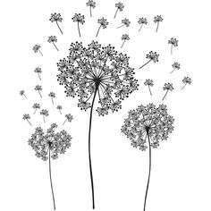 Dandelion Small Wall Decals (£16) ❤ liked on Polyvore featuring home, home decor, wall art, fillers, backgrounds, flowers, art, drawings, effects and doodle