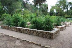 Vegetable Beds — Paul Hendershot Design, Inc Garden Design, Rock Wall Gardens, Vegetable Garden Design, Cottage Garden, Orchard Garden, Stone Planters, Dream Garden, Vegetable Garden Raised Beds, Garden Stones