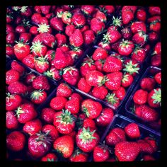 Strawberries at the Madison Farmer's Market