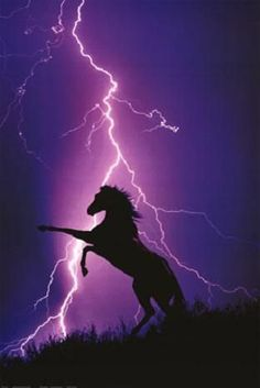 Horse and lightening