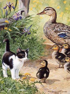 Animal artist Persis Clayton Weirs