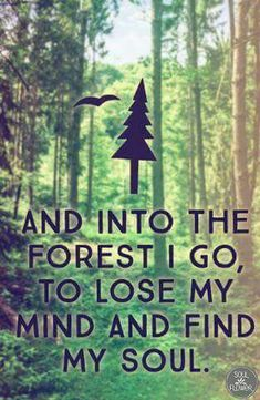 """""""And into the forest I go, to lose my mind and find my soul."""" """"And into the forest I go, to lose my mind and find my soul. Great Quotes, Quotes To Live By, Me Quotes, Inspirational Quotes, Beauty Quotes, Lost Quotes, Inspire Quotes, Peace Quotes, Motivational"""