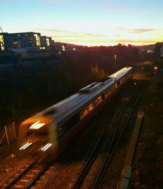 Trondheim, Norway, Train, Strollers