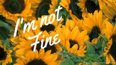 I'm not fine.  A reflection from someone who always says she's fine, even when the world is crashing down around her.