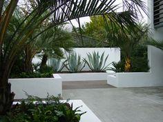 jardin architectural en béton blanc avec cactus et palmiers