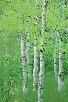 김종원 Kim, Jong-Won Watercolor Trees, Watercolor Paintings, Birch Tree Art, Art Folder, Aspen Trees, Impressionist Art, Gras, Art Plastique, Landscape Art