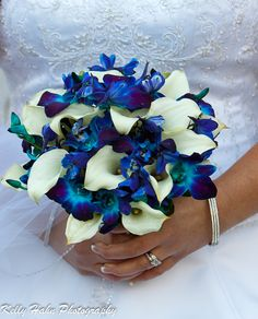 Hand tied bouquet created with white mini calla  lilies, electric blue delphinium, and blue dendrobium orchids.
