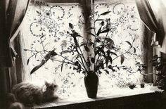 Edouard Boubat. New York, 1983