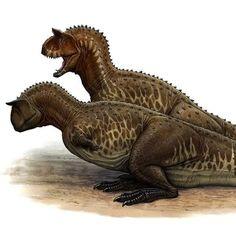100 Ideas De Dinosaurios Y Más Dinosaurios Animales Prehistóricos Prehistorico