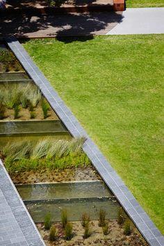 TCL_Monash-Uni-Caulfield-Campus-Green_Andrew-Lloyd-04 « Landscape Architecture Works   Landezine