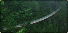 Capilano Suspension Bridge - a fun but shaky way to cross the 450' gorge. And don't miss the Treetops Adventure with 7 more suspension bridges through the tops of the evergreens