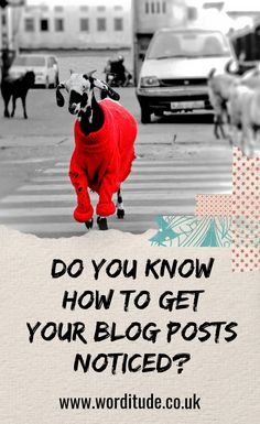 How To Promote A New Blog Post (works for old posts too) - Worditude