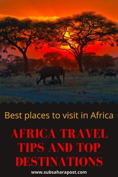 Like its varied people, landscapes, and wildlife Africa's political landscape varies from country to country, there are conflicts happening throughout Africa, therefore before you travel to Africa you must do your research and have a game plan. Below we have listed the top ten most popular travel destinations in Africa but before you start booking your flights here are some things you need to understand i Best Holiday Destinations, Top Destinations, New Africa, Travel Aesthetic, Africa Travel, Travel Posters, Cool Places To Visit, Travel Tips, Travel Photography
