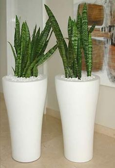 modern white planters - Google Search