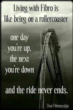 #Fibro life like a rollercoaster, #Chicago: ALLDAY ENERGY can help! alldayenergy.net