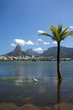 Lagoa Rodrigo de Freitas - Rio de Janeiro.