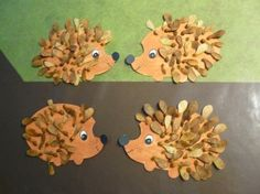 Le hérisson en semences de frêne I love Hedgehogs- with maple keys so cute.