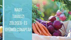 A legegészségesebb tavaszi idénygyümölcsök-és zöldségek