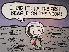 Snoopy on the moon. This Cartoon Mural fills a wall at the Charles M. Schulz Museum