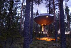 This tree house looks like a space ship. Cool!