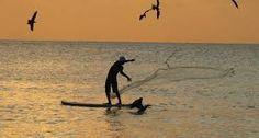 Resultado de imagem para pescaria