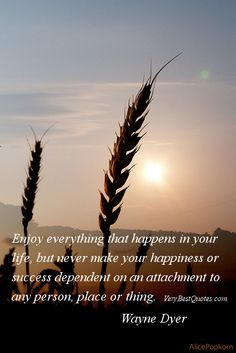 Attachment quotes - Enjoy everything that happens in your life, but never make your happiness or success dependent on an attachment to any person, place or thing.   Wayne Dyer