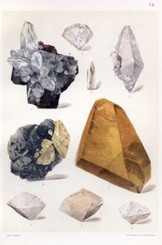 The Mineral Kingdom by Dr. Beautiful Gems Mineral Jewels Art Print by EnShape - X-Small Crystals Minerals, Rocks And Minerals, Crystals And Gemstones, Stones And Crystals, Design Theory, Mineralogy, Botanical Illustration, Collage Illustration, Antique Illustration