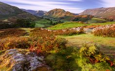 Golden Light, Martindale, Lake District, Cumbria, England by Joe Daniel Price