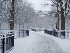 Tompkins Square Park snow by David Shankbone