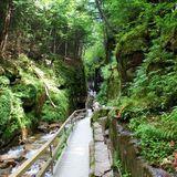 The Flume Trail - New Hampshire   AllTrails.com