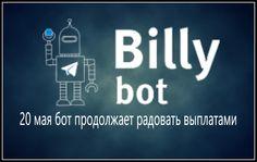 Billy bot 20 мая продолжает радовать выплатами