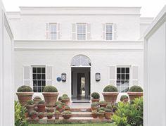 Pinspiration ~ mixed balls in pots, (Fern Close, Cape Town, Serena Crawford)   HEDGE Garden Design & Nursery