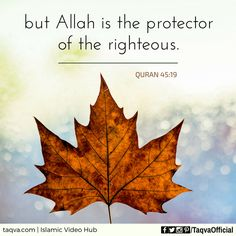 """Indeed, they will never avail you against Allah at all. And indeed, the #wrongdoers are #allies of one another; but #Allah is the #protector of the #righteous."" #Quran 45:19 _______________________________ #islam #islamic #reminder #quote #quotes #quranic #verse #alhamdulillah #subhanallah #allahuakbar #iman #faith #belief #believer #truth #muslim #ummah #muslimah #life #protection #religion #God #taqva"