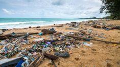Plastspisende bakterie spiser plast seks ganger raskere enn før – NRK Norge – Oversikt over nyheter fra ulike deler av landet Water, Outdoor, Gripe Water, Outdoors, Outdoor Games, The Great Outdoors