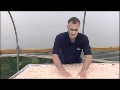 Propagation Bench: How to create a misting propagation bench (part 1)