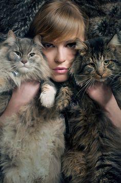 Title: Cats Date: 2011 Technique: Digital print Size of work: 65 x 100 cm Price: 420 USD Art Courses, Artist Portfolio, My Emotions, Medium Art, Digital Prints, Anna, Fine Art, Gallery, Cats