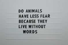 Image via We Heart It #animals #fear #happines #happy #love #question #quote #quotes #sad #sadness #words