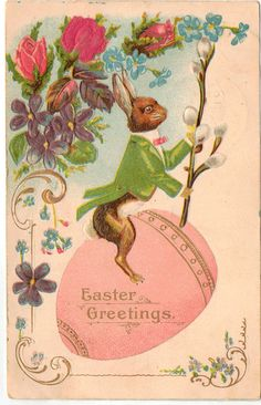 Very nice vintage postcard with a Bunny in Tuxedo riding an Easter egg with easter Greetings inscribed in egg. Colorful flowers throughout front,